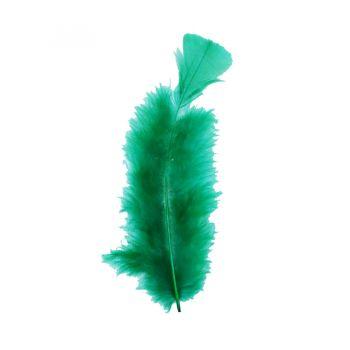Pena Pequena de Peru Verde Escura- 12 unidades