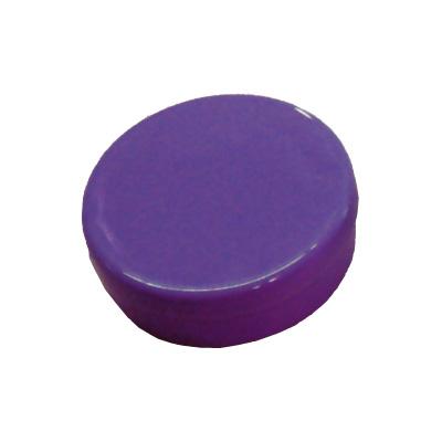Latinha de Plástico para Lembrancinha Roxa - 10 unidades