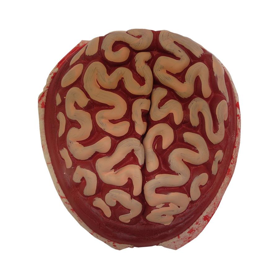 Cérebro Zombie