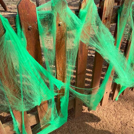 Teia de Aranha para Decoração Halloween Verde